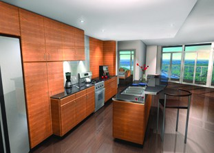 luxury residential condominiums interior